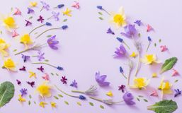 Spring flowers on paper background stock photos