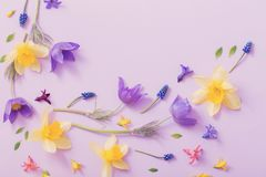 Spring flowers on paper background Stock Images