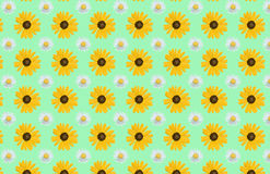 Spring flowers pattern Royalty Free Stock Photography
