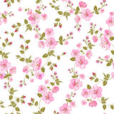 Spring flowers pattern Stock Photo