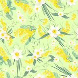 Spring flowers pattern. Spring flowers seamless pattern with narcissus and mimosa brunches on a green background Stock Illustration