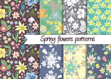 Spring flowers patterns. Set of seamless vector patterns. Stock Photography