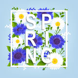 Spring Flowers Poster Stock Images
