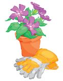 Spring Flowers in Pot Stock Image