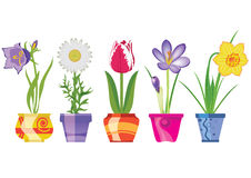 Spring Flowers In Pots, Vector Ill. Spring Flowers In Pots, Isolated On White Background, Vector Illustration stock illustration