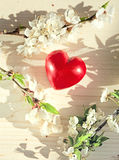 Spring flowers and red heart candle Stock Photo