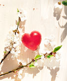 Spring flowers and red heart candle Royalty Free Stock Photos