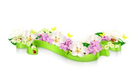 Spring flowers and ribbon. Illustration on white background Royalty Free Stock Image