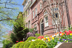 Spring Flowers Richardsonian Romanesque Row Houses Royalty Free Stock Photography