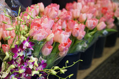 Spring flowers for sale Stock Photography