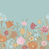 Spring flowers. Seamless floral border. Stock Photos