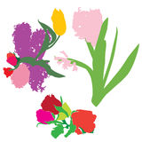 Spring flowers silhouettes Royalty Free Stock Photos