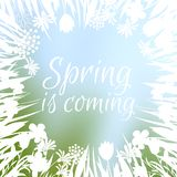 Spring flowers silhouettes, vector spring is coming background vector illustration