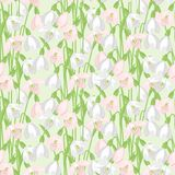 Spring flowers snowdrops natural seamless pattern Stock Photo