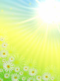 Spring flowers with sun. Spring flowers and sun rays in blue, yellow and green vector illustration