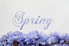 Spring flowers - text with blossoms Stock Images