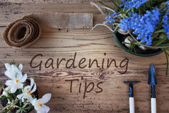 Spring Flowers, Text Gardening Tips Royalty Free Stock Images