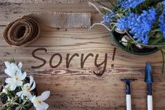 Spring Flowers, Text Sorry. English Text Sorry. Spring Flowers Like Grape Hyacinth And Crocus. Gardening Tools Like Rake And Shovel. Hemp Fabric Ribbon. Aged stock photos