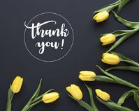 Spring flowers. `Thank you!` written in calligraphic style. Frame made of yellow tulip flowers on black background. Flat lay, to vector illustration