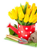 Spring flowers tulip with garden tools Stock Photo