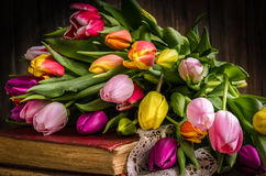 The spring flowers tulips on an old vintage book Stock Image