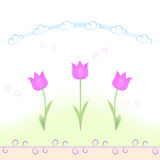 Spring flowers (tulips) pattern Royalty Free Stock Photo