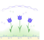 Spring flowers (tulips) pattern Royalty Free Stock Photography