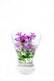 Spring flowers in vase Royalty Free Stock Photo
