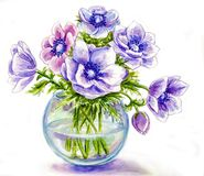 Spring flowers in vase. Watercolor illustration Royalty Free Stock Photos