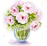 Spring flowers in vase. Watercolor illustration Royalty Free Stock Photography