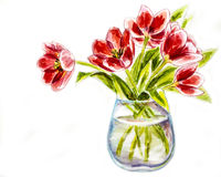 Spring flowers in vase Stock Photography
