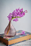 Spring flowers in vases Stock Photos