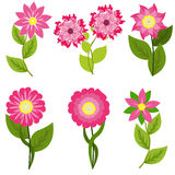 Spring Flowers Vector illustration Stock Photography