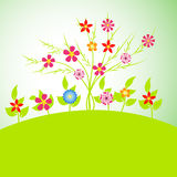 Spring Flowers Vector illustration Royalty Free Stock Photography