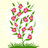 Spring Flowers Vector illustration Stock Image