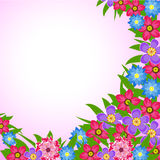 Spring Flowers Vector illustration Royalty Free Stock Images