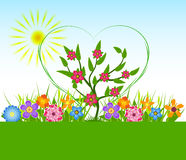 Spring Flowers Vector illustration Royalty Free Stock Image