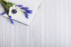 Spring flowers violet and white Stock Photography