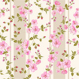 Spring flowers wallpaper Royalty Free Stock Images