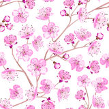 Spring flowers wallpaper Royalty Free Stock Image
