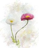 Spring Flowers Watercolor Stock Images