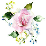 Spring flowers watercolor illustration Stock Photo