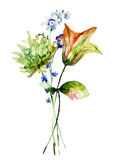 Spring flowers, watercolor illustration Stock Image