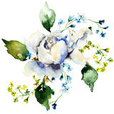 Spring flowers watercolour illustration Stock Photography
