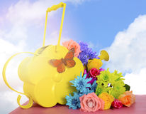 Spring Flowers and Watering Can Stock Image