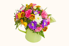 Spring flowers in watering pot Stock Image