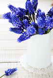 Spring flowers in white jug Royalty Free Stock Images