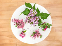 Spring flowers on a white round table Royalty Free Stock Photo