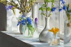 Spring flowers on windowsill Royalty Free Stock Image
