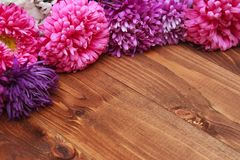 Spring flowers on wooden background Royalty Free Stock Photos